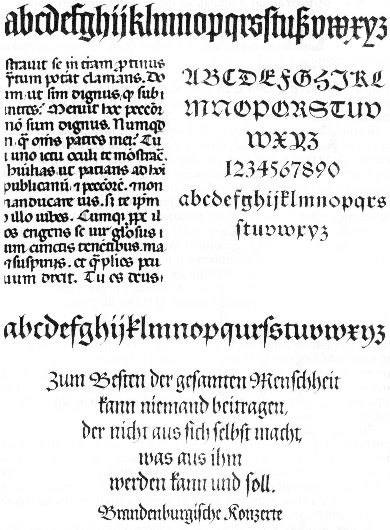 img241-2
