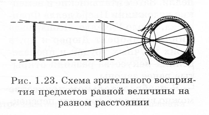 img356-1