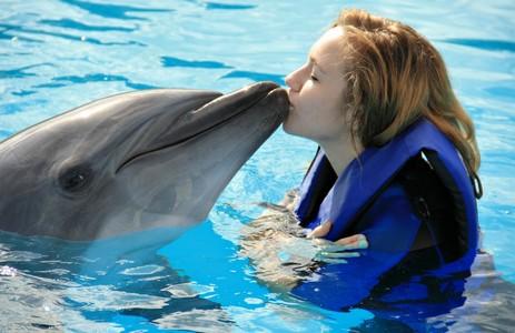 Дельфинизация сознания